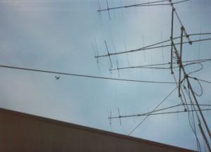 800px-OldG3KMI_VHFcontest_antenna_array2